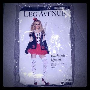 Enchanted Queen Costume